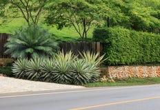 Långt staket för stenvägg bredvid vägen Arkivbilder