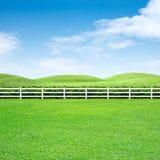 Långt staket och grönt gräs arkivfoto