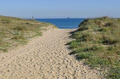 Långt till havet Fotografering för Bildbyråer