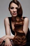 Långt Wavy hår. Bra kvalitets- retuschera. royaltyfria foton