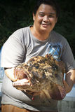 lås fångad fiska pikevinter royaltyfri fotografi