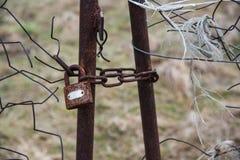 Lås med kedjan på den gamla porten inställda bakgrunder Royaltyfria Foton