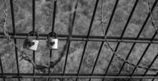 Låst förälskelse på taggtrådstaketet royaltyfri fotografi