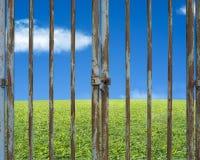 Låst rostig dörr med det härliga landskapet, grön ängblått sk Arkivfoto