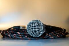Låt musiken spela med den yrkesmässiga mikrofonen Royaltyfri Foto