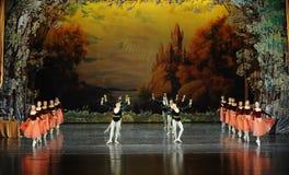 Låt oss dricka dans-balett för together-The den gladlynta svan sjön Fotografering för Bildbyråer
