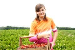 Låt oss gå jordgubbeplockning Arkivbilder