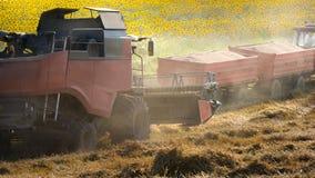 låter gps för combinecombinesdatoren som perfekt skördar steeren det raka systemet till traktorvete arkivfoton