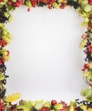 låter vara den isolerade härliga ramen för hösten verklig white arkivfoton