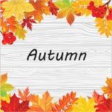 låter vara den isolerade härliga ramen för hösten verklig white Nedgångsidor på en trätextur Arkivbild