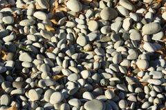 låter vara pebbles Arkivbild