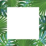 låter vara tropiskt Fyrkantig ram royaltyfri illustrationer