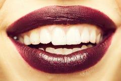 Lèvres femelles sexy photo libre de droits