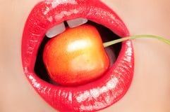 Lèvres rouges avec des baies Image libre de droits