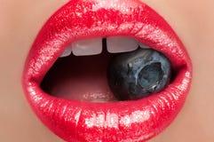 Lèvres rouges avec des baies Photographie stock libre de droits