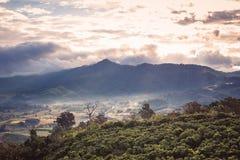 Légèrement brouillard sur la montagne photographie stock libre de droits