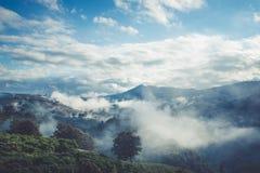 Légèrement brouillard sur la montagne images libres de droits