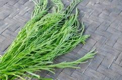 Légume d'acacia ou de Cha Om sur un plateau en bois Photo stock
