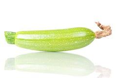 légume d'objet de moelle /courgette d'isolement par élément de conception Photo libre de droits