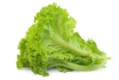 Légume de salade, laitue d'isolement sur le fond blanc photographie stock