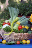 Légume frais de jardin Photos stock