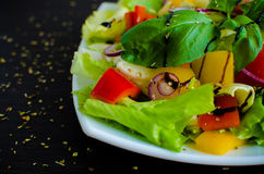 légume frais de tomate de salade de préparation de laitue de concombre image stock