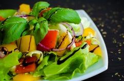 légume frais de tomate de salade de préparation de laitue de concombre photos stock