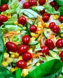 légume frais de tomate de salade de préparation de laitue de concombre photographie stock libre de droits