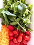 légume frais de tomate de salade de préparation de laitue de concombre Repas savoureux et sain La maison a fait la nourriture images stock