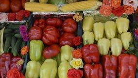 Légume, poivrons, tomates, concombres Image stock
