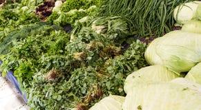 Légume vert Photos stock