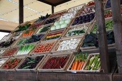 Légumes à l'expo 2015 en Milan Italy Image libre de droits