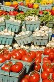 Légumes 1 Photos libres de droits