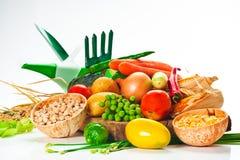Légumes Photographie stock