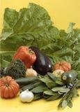 Légumes assortis Photographie stock libre de droits