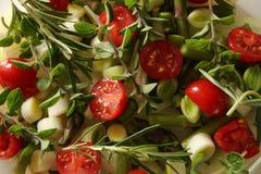 Légumes avec des herbes Photographie stock libre de droits