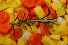 Légumes avec des herbes images libres de droits