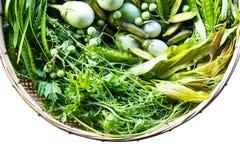 Légumes, campagne d'herbes Images libres de droits