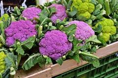 Légumes chez le Naschmarkt, Wien Photos stock