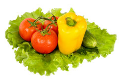 Légumes colorés frais Image libre de droits