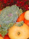 Légumes comme fond Photo libre de droits