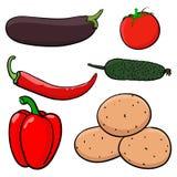 légumes Croquis coloré tiré par la main illustration libre de droits