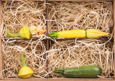 Légumes crus Photographie stock libre de droits