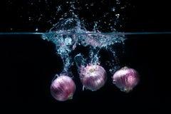 Légumes d'échalotes, laissés tomber dans l'eau douce Photographie stock libre de droits