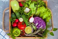 Légumes d'été dans une boîte en bois Photos libres de droits