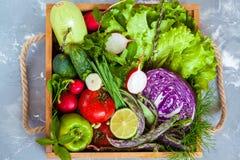Légumes d'été dans une boîte en bois Photographie stock libre de droits