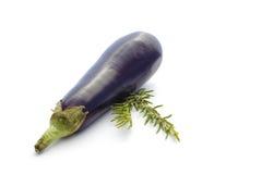 Légumes d'été sur le blanc : aubergine et romarin image libre de droits