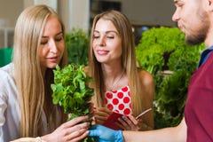 Légumes d'achat d'amies sur le marché Photographie stock libre de droits