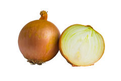 Légumes d'oignon d'isolement Images stock