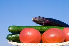 Légumes dans le ciel image stock